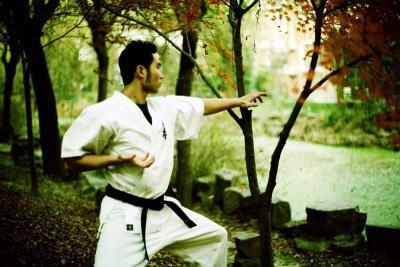 空手道前手直拳训练