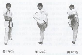 侧蹴类踢技训练