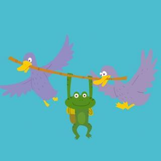 青蛙旅行家