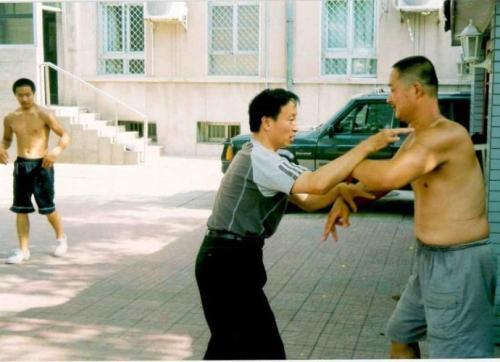 我向名师学大成拳