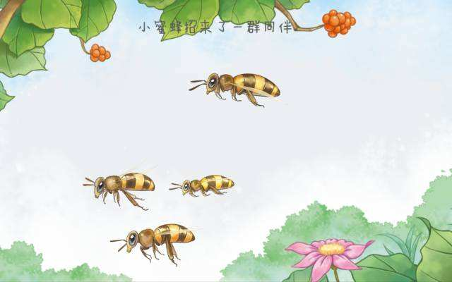 一只懒惰的小蜜蜂