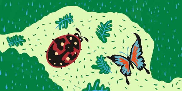 小蚂蚁历险记