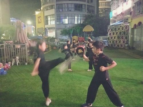 南拳散手组合练习