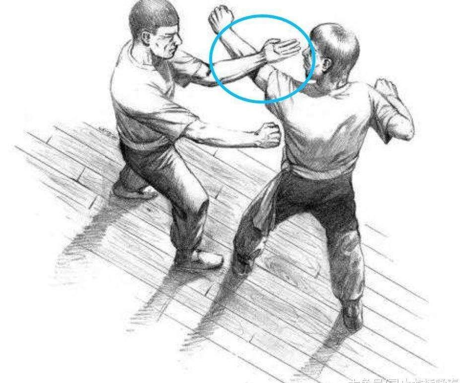 咏春拳的特点