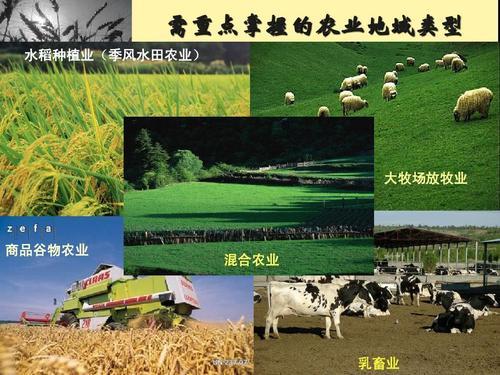 世界主要的农业地域类型