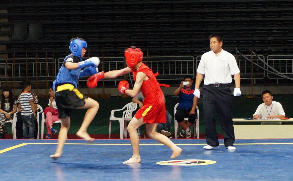 戴维斯城中国武术擂台赛