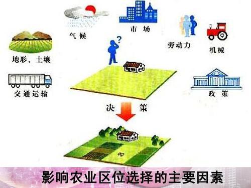 农业的区位选择