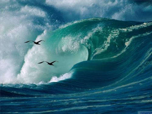 海水运动形式