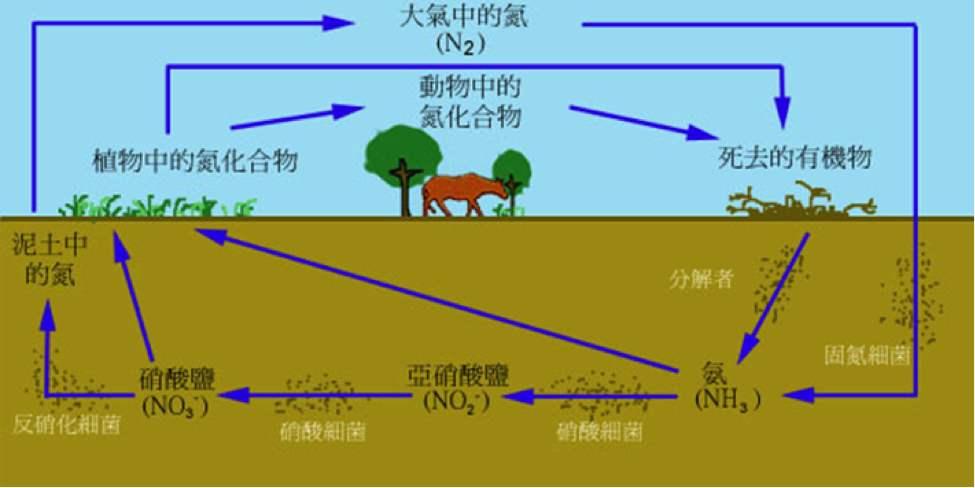 土壤在地理环境中的作用