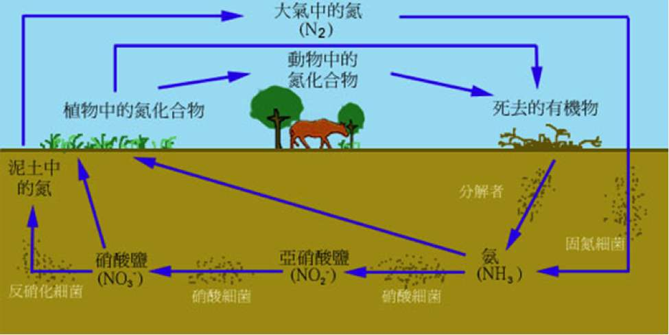 土壤的肥力特性及其重要性
