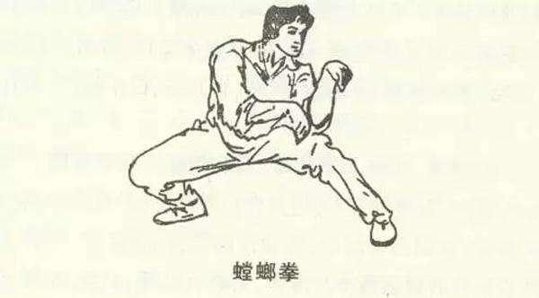 梅花螳螂连环拳